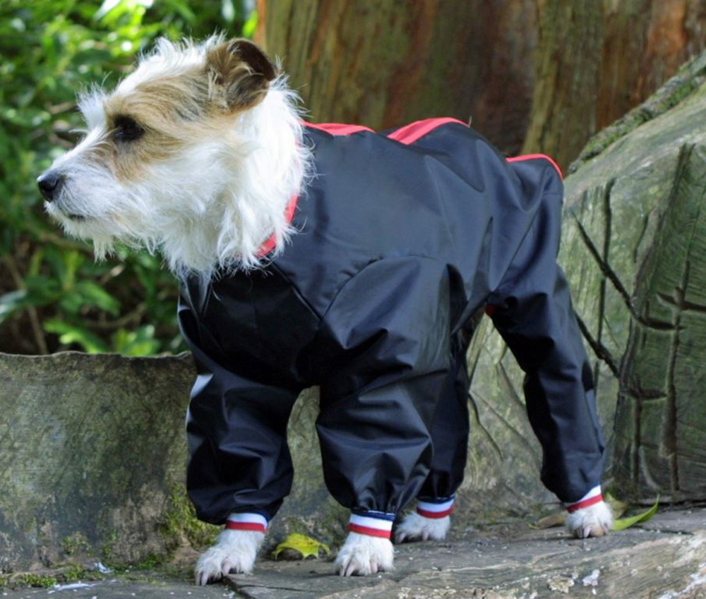 Waterproof Dog Trouser Suits Uk