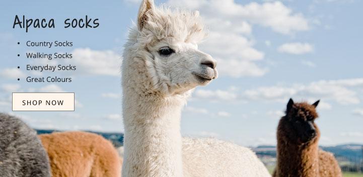 Yoga Products Vet Bedding Vetbed Dog Coats Alpaca Socks