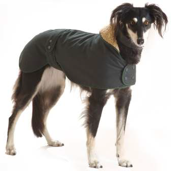 Water & Windproof Greyhound Hunter Dog Coat