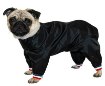 Waterproof Nylon Half Leg Dog Trouser Suit