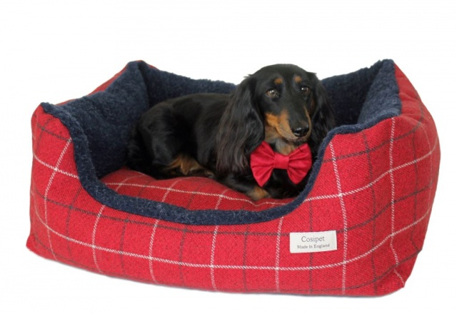 Rectangular Tweed Kalahari Dog Bed