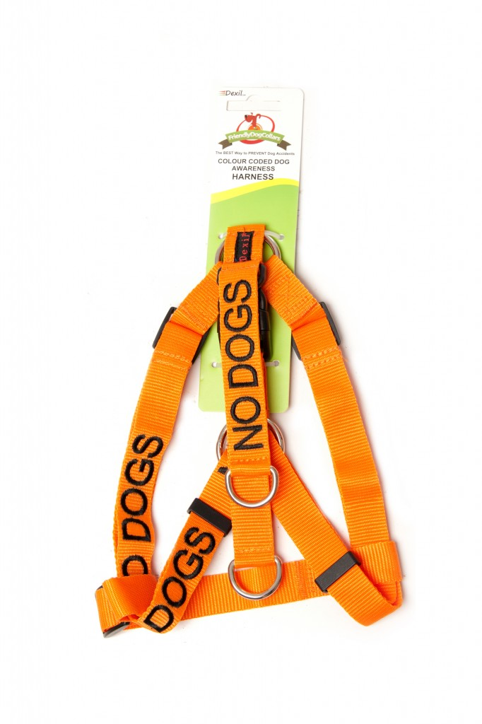 NO DOG,  Dog Strap Harness Orange Colour Coded
