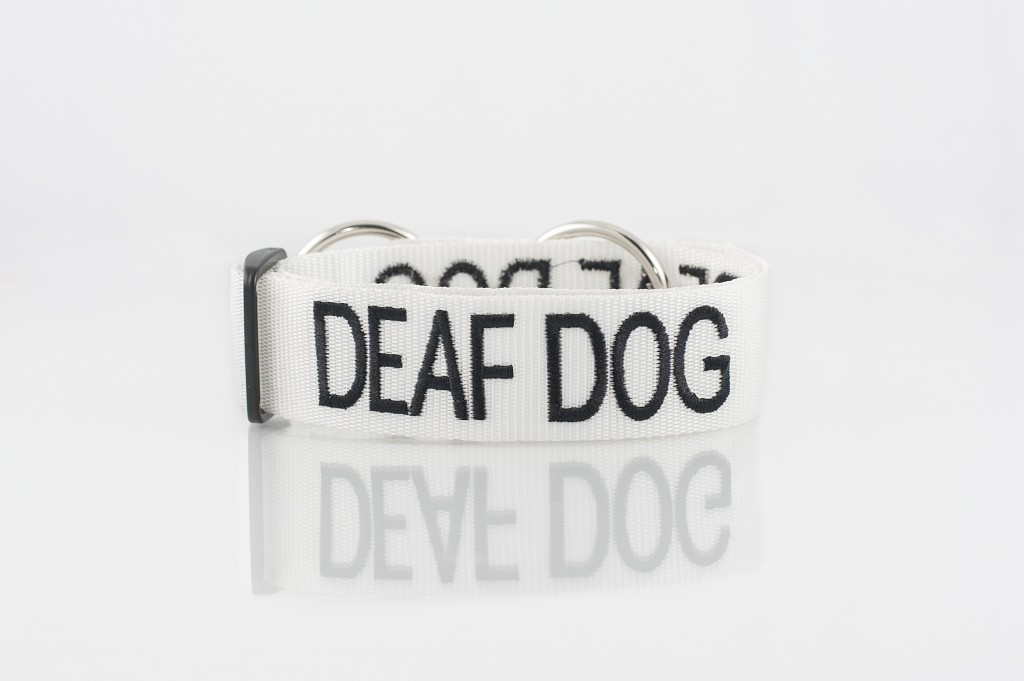 DEAF DOG, Dog collar Semi Choke and Buckle Collars White Colour Code