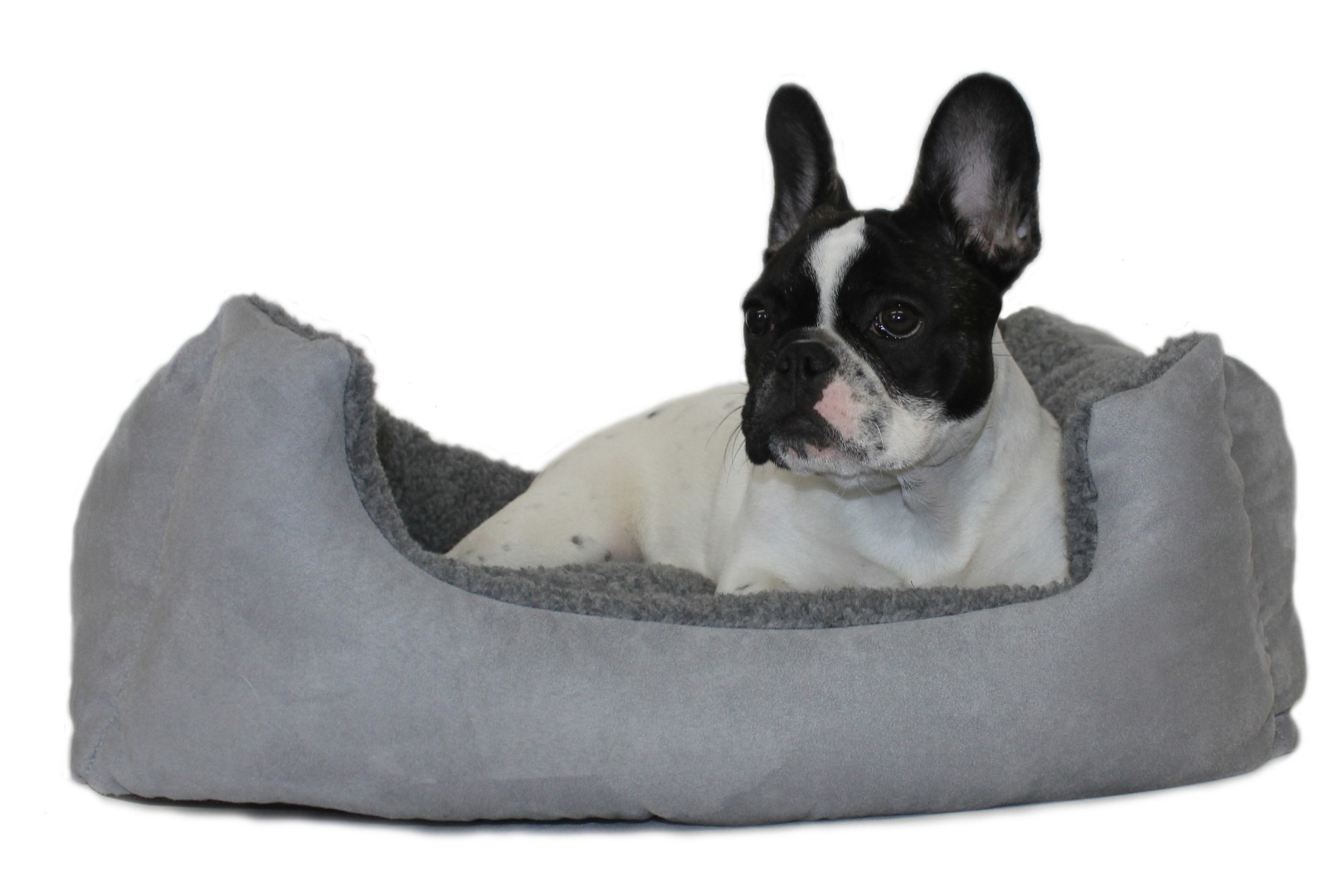 Rectangular Chelsea Kalahari Dog Bed  Grey Range