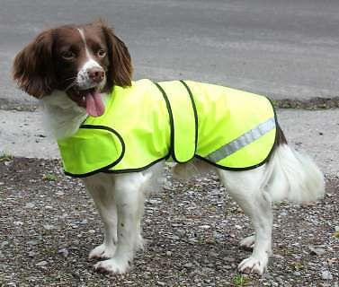 Hi-visibility waterproof Dog Safety Coat  Lined for warmth. Fluorescent yellow