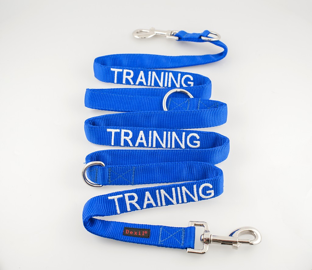 TRAINING DOG,  Dog Lead Leash with padded Handle  Blue Colour Coded