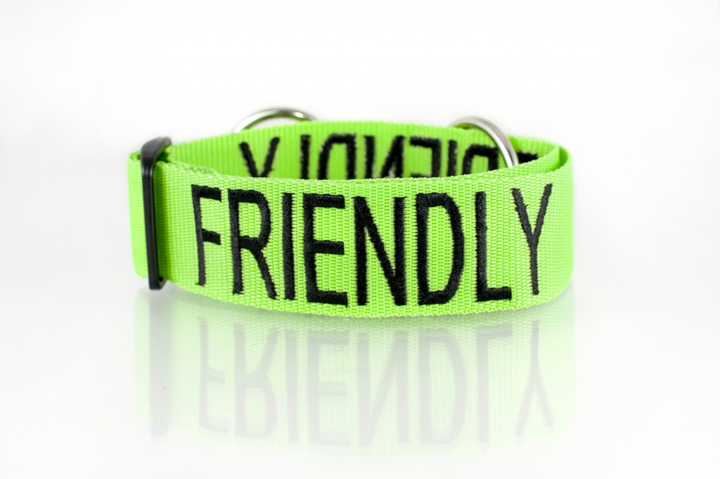 FRIENDLY DOG, Dog collar Semi Choke and Buckle Collars Green Colour Code