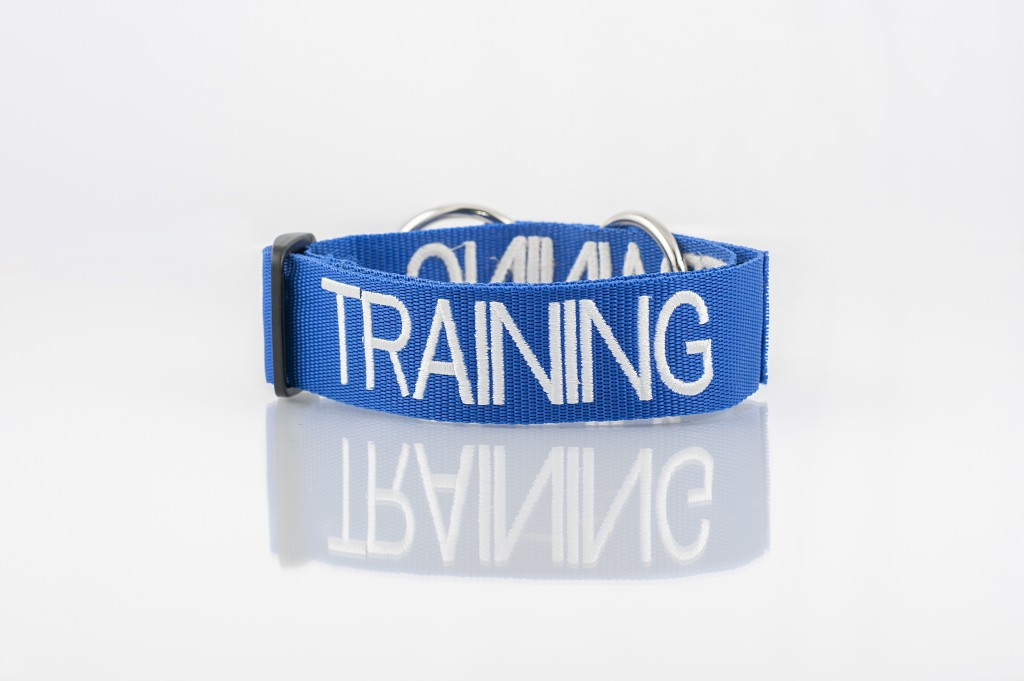 TRAINING DOG, Dog collar Semi Choke and Buckle Collars Blue Colour Code