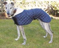 Greyhound Showerproof Quilted Nylon Anorak Dog Coat
